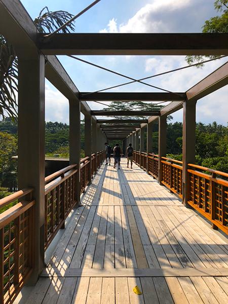 4seasons 吊り橋